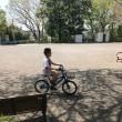 毎日、自転車