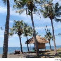 ハワイのわらぶき小屋