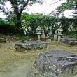 本薬師寺跡周辺のホテイアオイ・2017.8.25