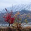 冬の足音2017 ~ 斜平山の雪化粧と初雪 ~