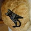 猫好き必見!「挟み猫」