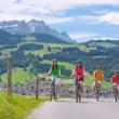 ガストロノミック -  電子自転車ツアー Culinary -  e-bike tour
