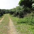 石垣島の海びらきと鳩間島へ 47回目 鳩間島