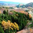 絶景の秋色です。