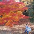 昭和記念公園へ…