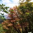 2017/09 台風一過の赤城山を登る(その3)