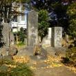 晩秋の「墓参ら~」ー3