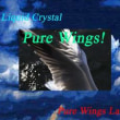 Ustream&Youtube TV【Liquid Crystal Present's『Pure Wings!』】出演者募集!