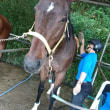 馬の仕事につくために アニベジ奮闘記エピソード280