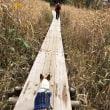 グランデコ紅葉散歩