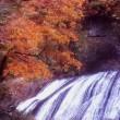 『紅葉の想い出』 袋田の滝