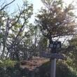 2017-7-9 赤城の黒檜山、駒ケ岳を歩く