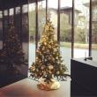 郊外の瀟洒なマンションのクリスマスツリー★★