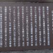 岡山県津山市院庄・にらみあいの松