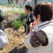 環境美化(草取り)に集まる人たち