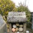 藤原神社を訪ねる(香川の神社166)