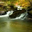 11月9日  江竜田の滝落葉舞う