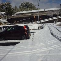 昨日に続き、今日も大雪☃