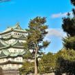 1月13日 名古屋城