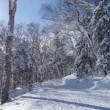 2017.12.10  黒岳BC
