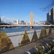 蕉道「おくのほそ道パートⅡ」 江東区: 深川   芭蕉記念館