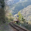 江の川の絶景がすばらしい長谷駅