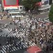 日本シャンソン・カンツォーネ振興協会コンクール 180918