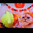 10/16 今流行のネコチュール 猫が舌を切らないか心配