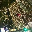 立派なクリスマスツリー‼