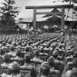 「戦争への教育」 たんぽぽ日記