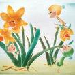 水仙や福寿草が咲き出しました