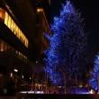 日比谷のクリスマスツリー