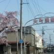 長井まちなか桜回廊 お誘い2