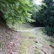 2018.6.17 大茶山~滝下の天狗塚 * 徳島県東祖谷落合