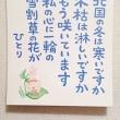 """新しい人生の""""誕生日"""""""
