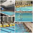 市水泳大会