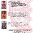 🌟中国楽器コンサート
