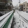 今日の積雪プランニング!
