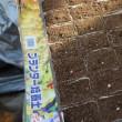 自然菜園スクール4/21(土)【自然稲作・発酵コース】、4/22(日)【自然育苗タネ採りコース】