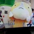 ゆるキャラちゃん達の相撲大会!