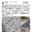 カミソリ刃がついた鉄条網…これが琉球セメントと防衛省、そして安倍政権の正体