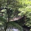 香川県  その1  かずら橋編