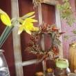 「花のチカラ」は偉大です!