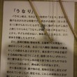 ☆五島バラモン凧そして壱岐・平戸・長崎凧