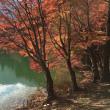 ★伊奈ヶ湖の紅葉・・・