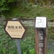まち歩き左0819  京都一周トレイル 北山東部コース 47