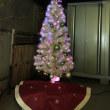 クリスマスツリー点灯!