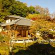 紅葉を求めて北鎌倉へ