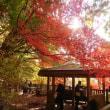 11月10日 上会津屋周辺の紅葉情報