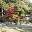 広川寺の紅葉